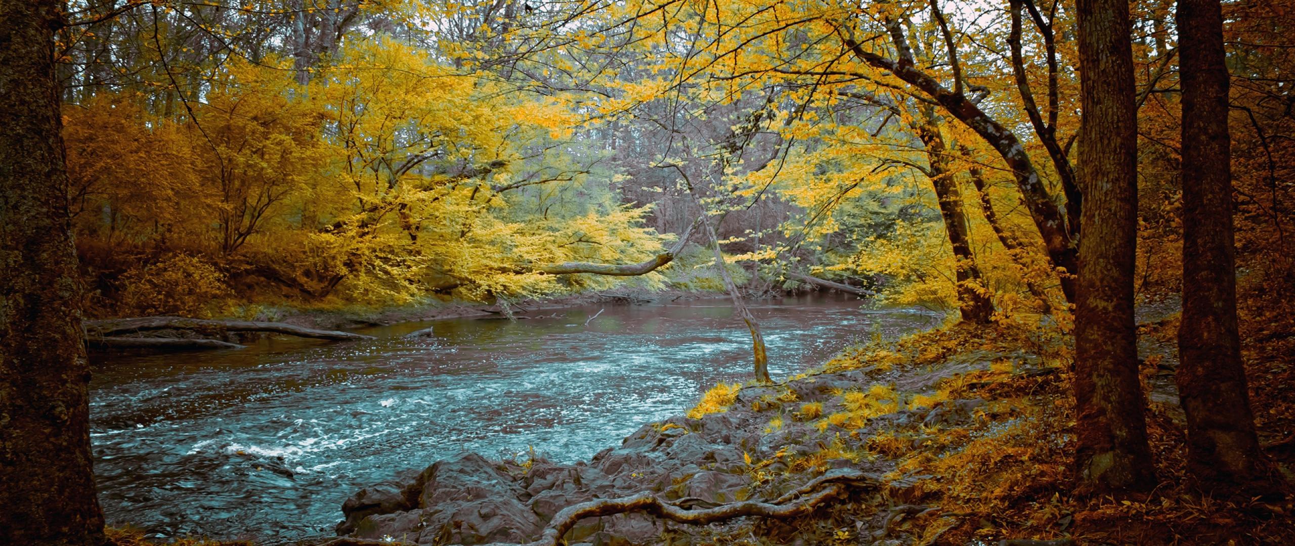 2560x1080 Wallpaper mountain river stones wood dark for fall 2560x1080