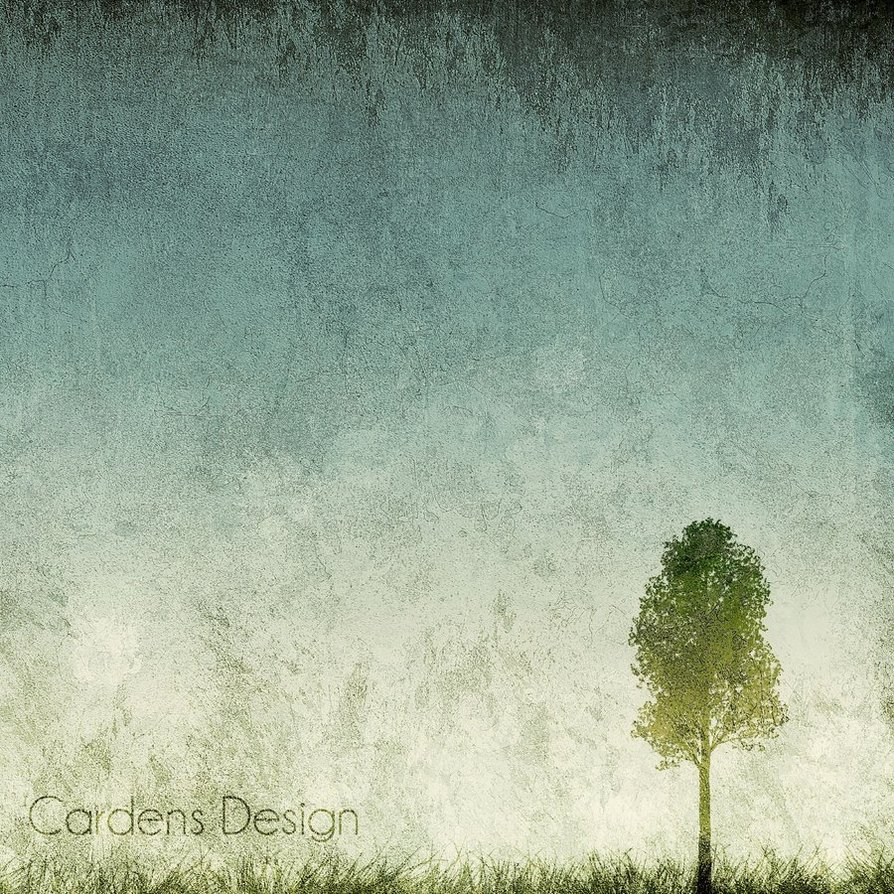 Grunge Tree Backgrounds HD wallpaper background 894x894