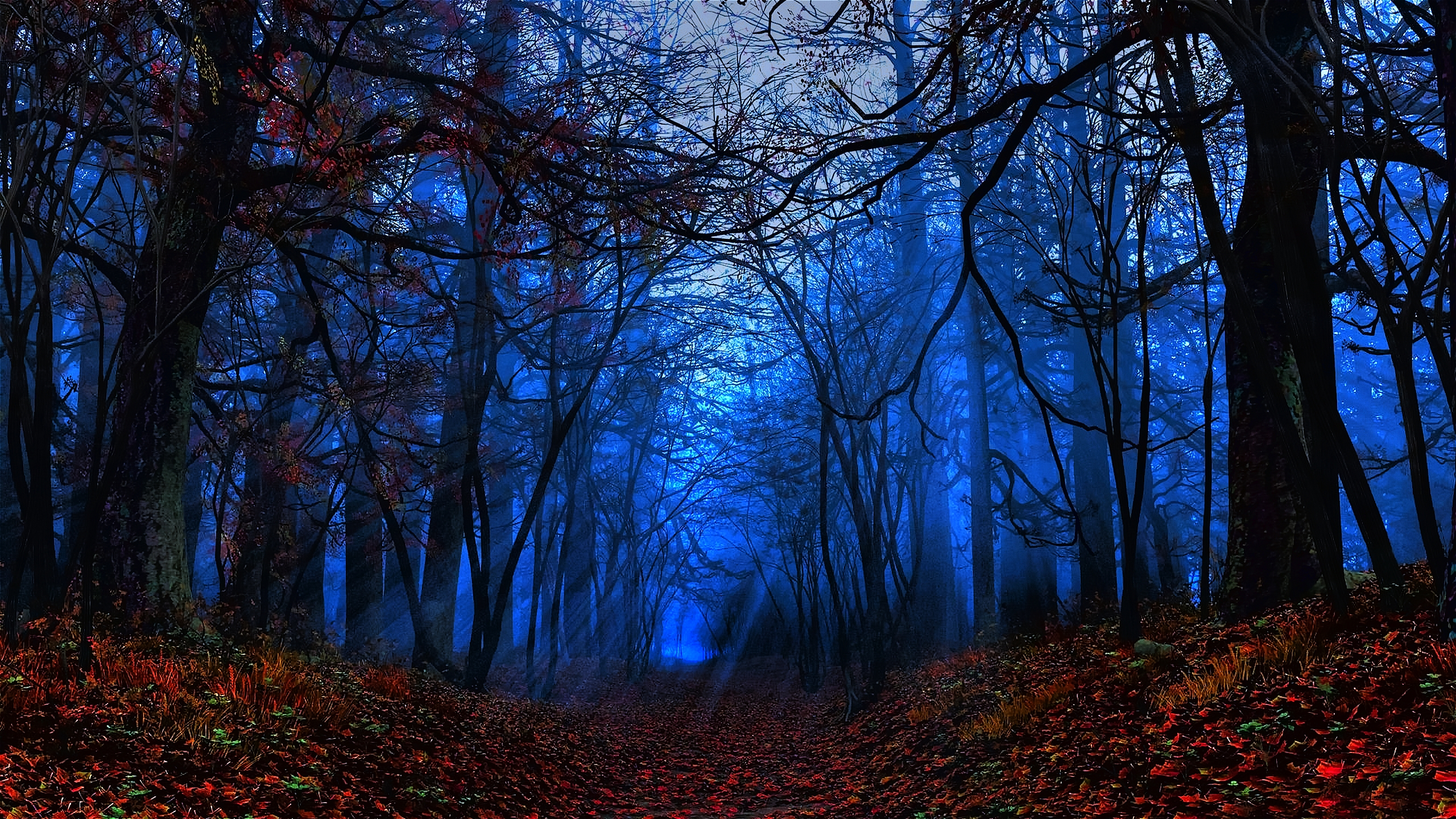 Mystical widescreen wallpapers wallpapersafari - Mystical background pictures ...