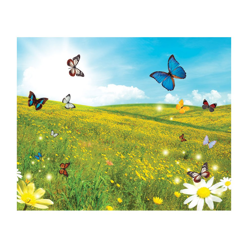 Butterfly Field Removable Full Wall Wallpaper Mural Lowes Canada 1000x1000