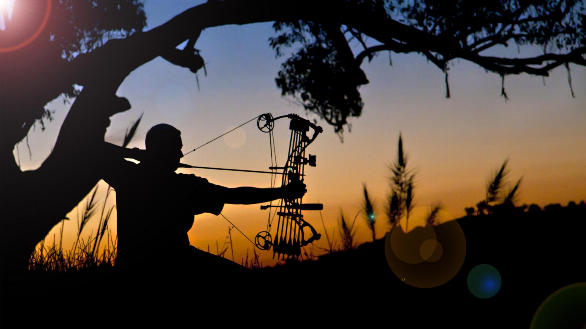Elite Archery Wallpaper Images Pictures   Becuo 1919x1079