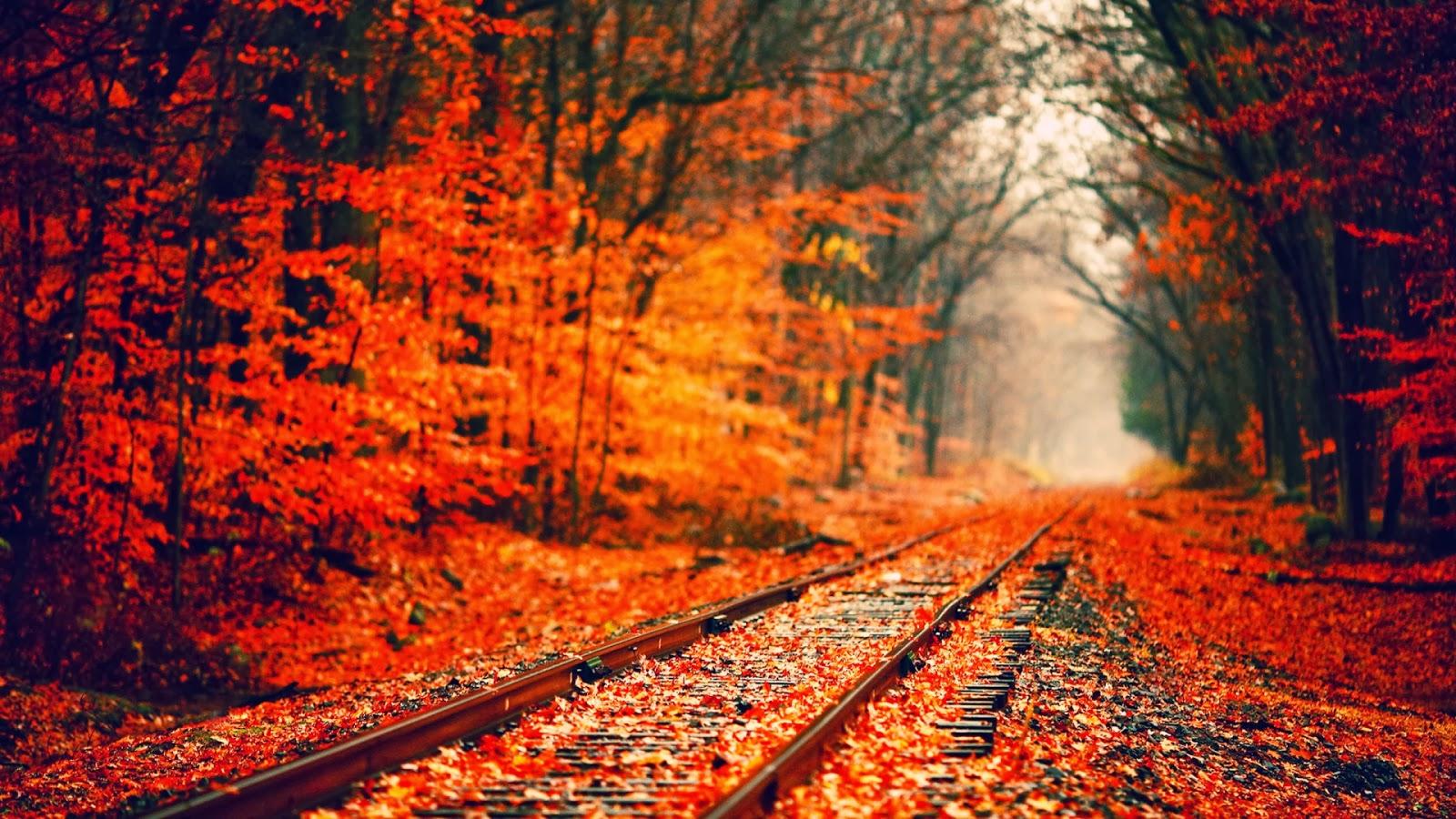 Country Fall Wallpaper Wallpapersafari