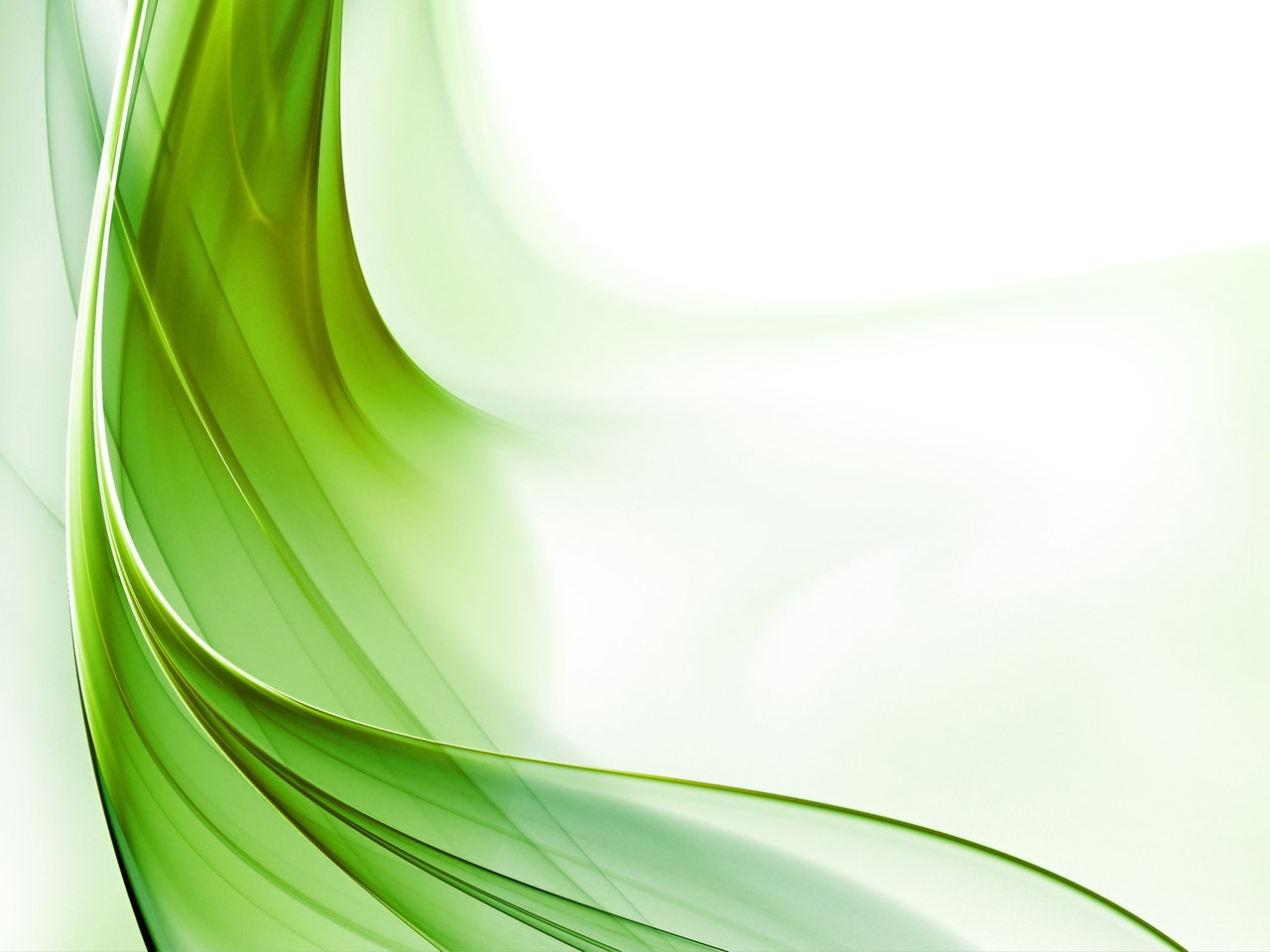 Light Green Background Pictures All HD Wallpapers 1280x960