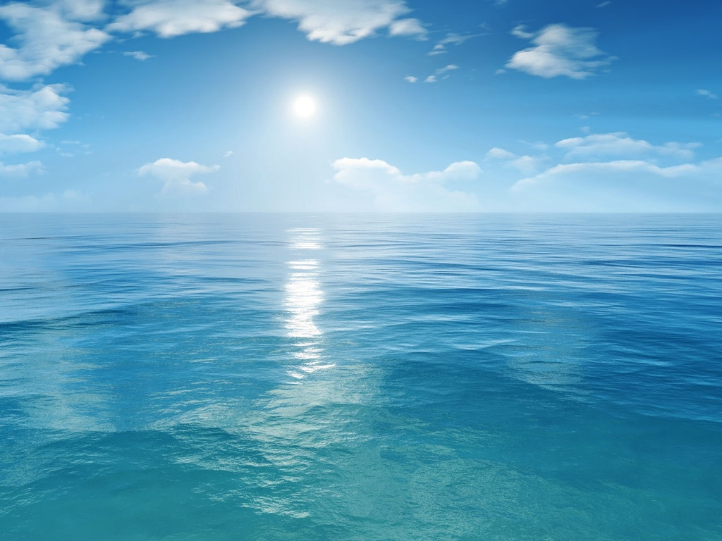 Sea Wallpaper   funny pictures funny images 1024x768