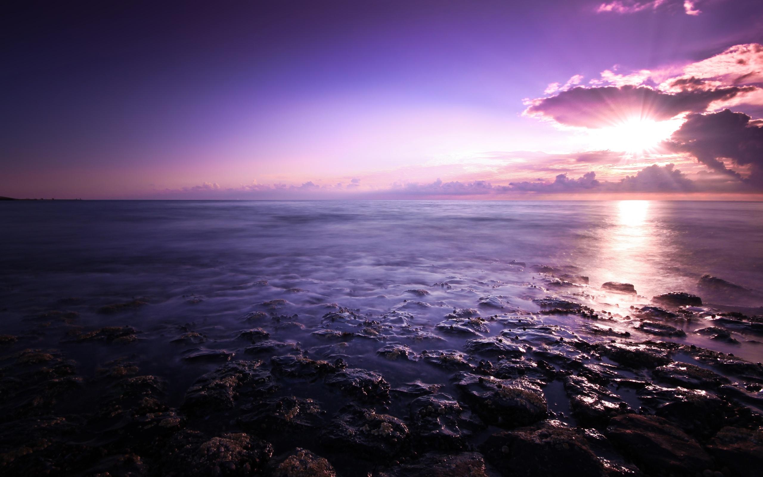 Purple Seascape Wallpapers HD Wallpapers 2560x1600