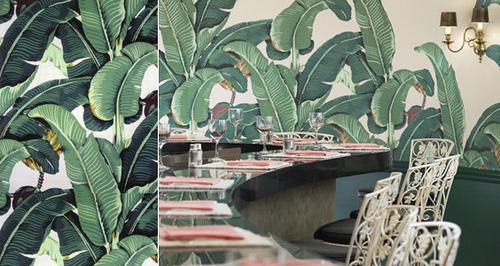 hinson martinique banana leaf wallpaper beverly hills palm beach chic 500x266