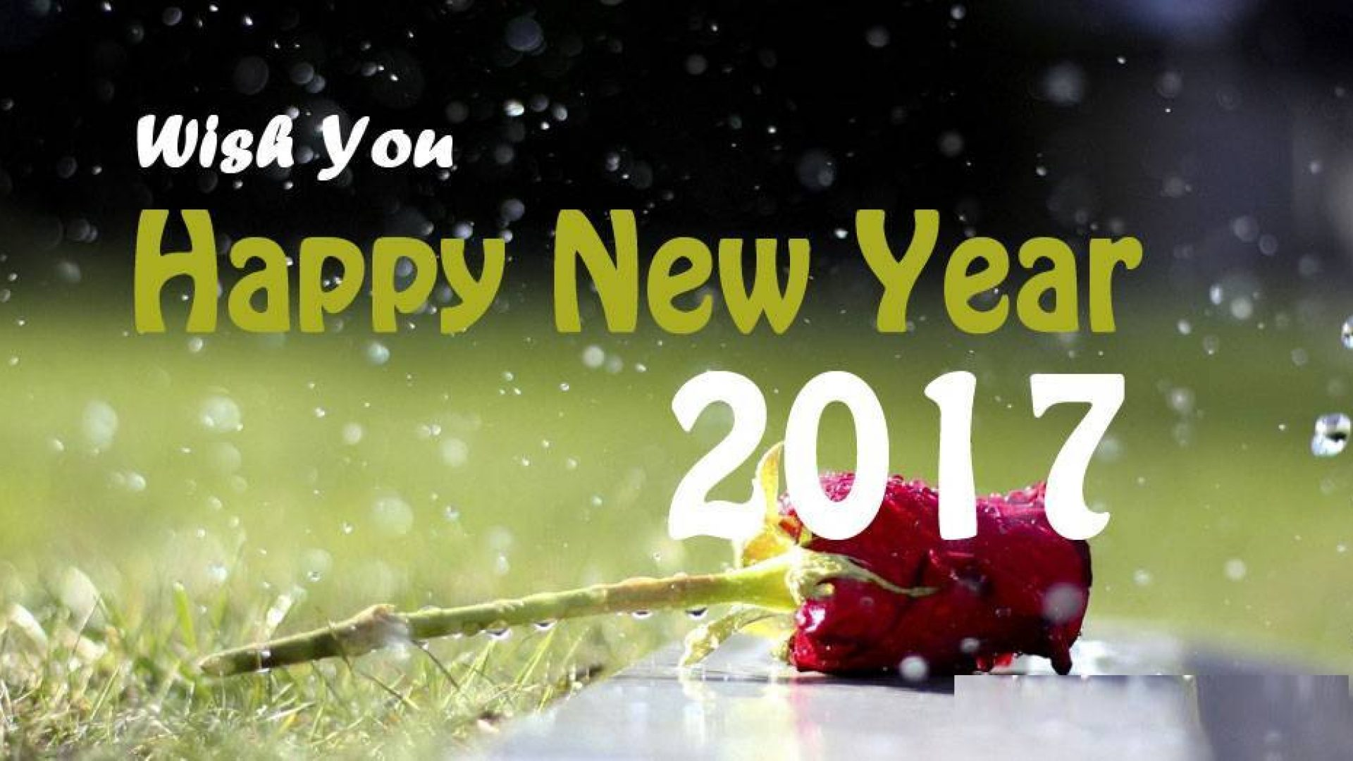 new year wishes wallpaper download 1920x1080