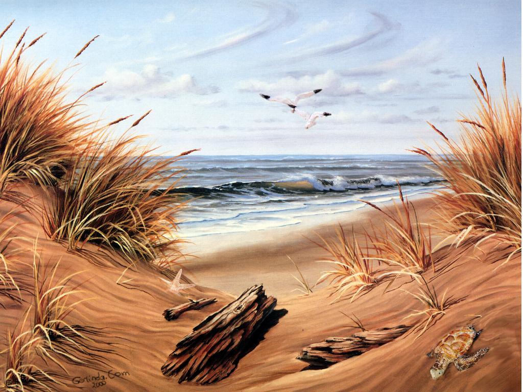 beach scenes wallpaper and screensavers - wallpapersafari