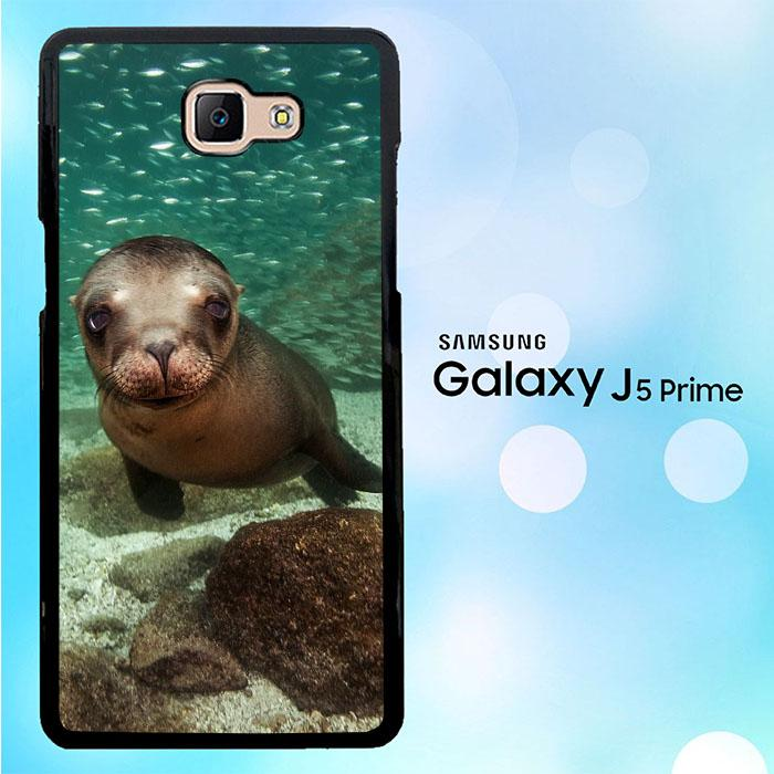 Bearded Sea Lion WALLPAPER Y1523 Samsung Galaxy J5 Prime 700x700