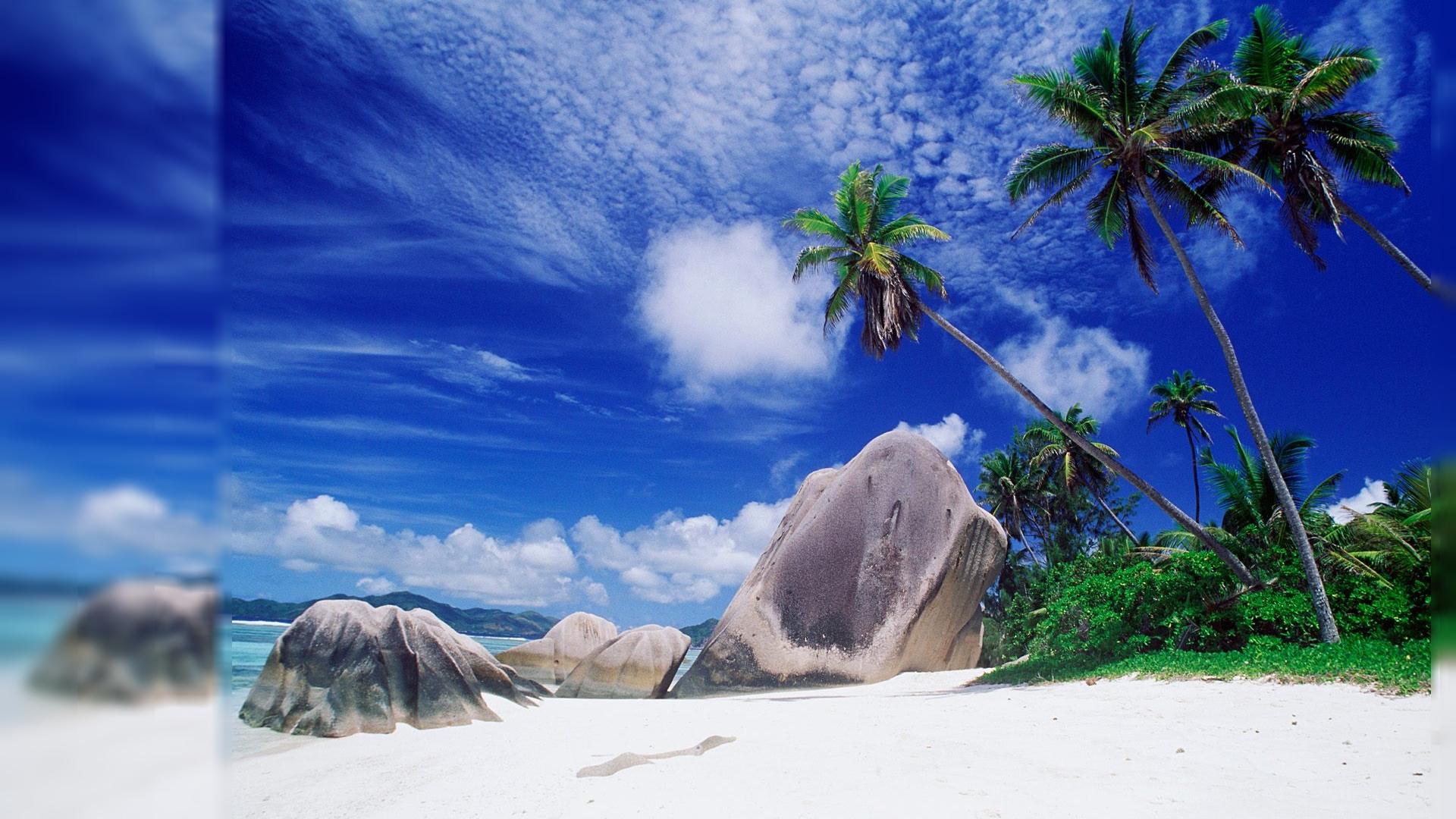 Tropical Computer Wallpaper | Desktop Image
