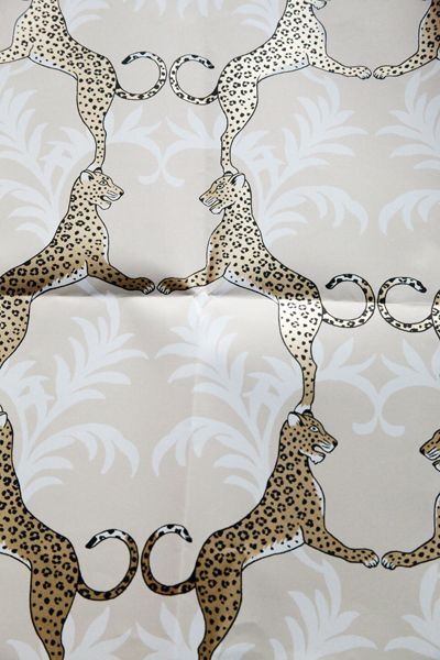 Cheetah wallpaper Thibaut Paint Wallpaper Fabric Pinterest 400x600