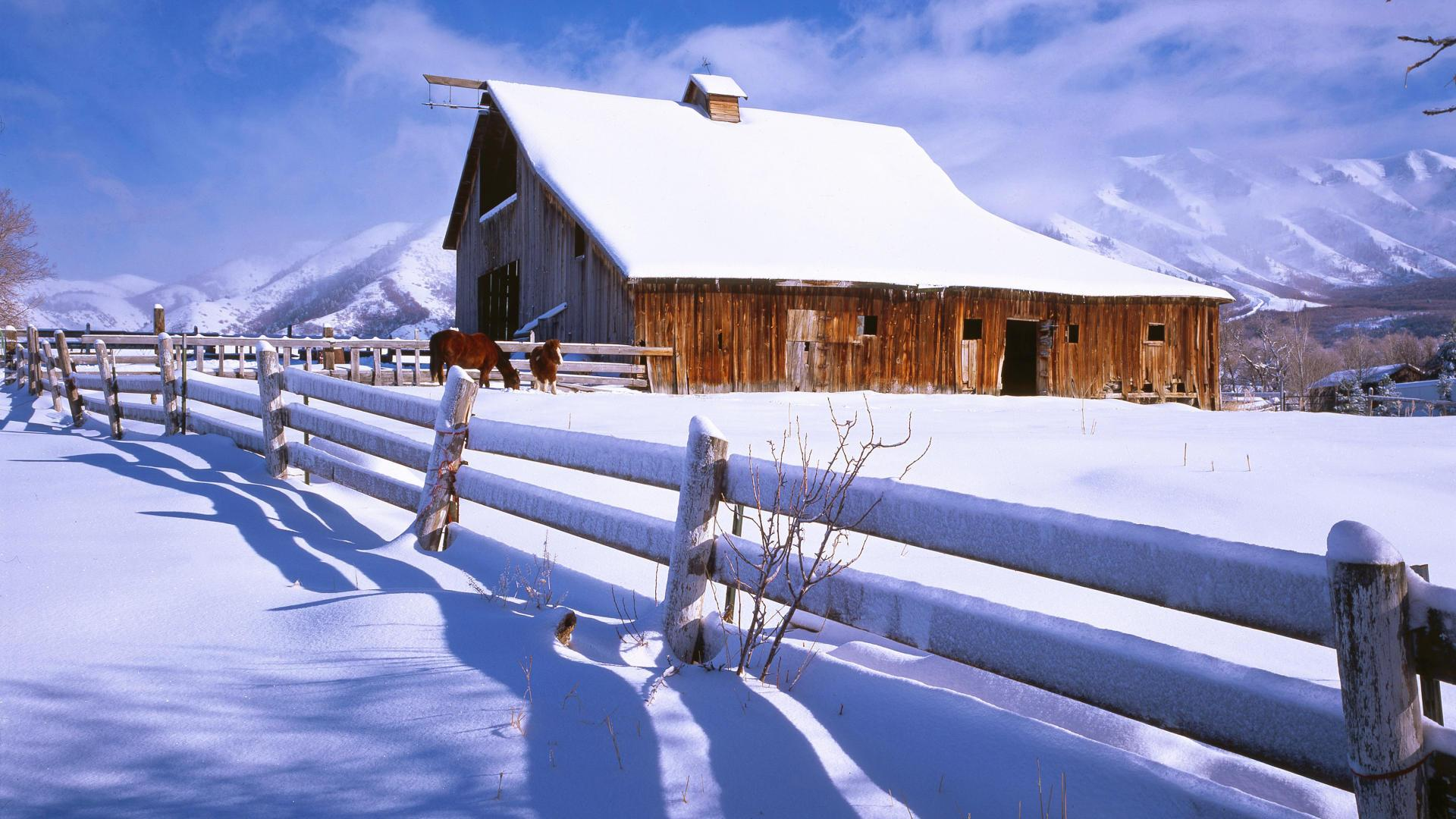 Horse Barn In Winter Hd Wallpaper Wallpaper List 1920x1080