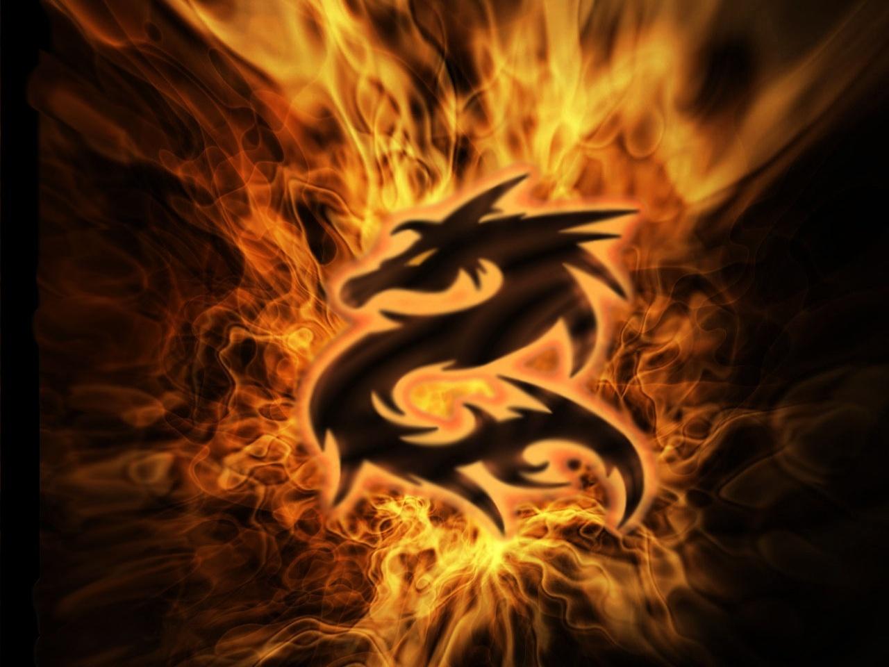 Flaming Dragon Wallpaper pegasusknight 1280x960