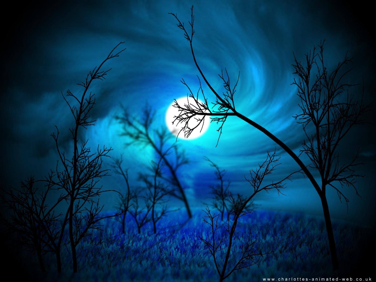 Forest at Midnight Wallpaper by Jadzia21 1600x1200