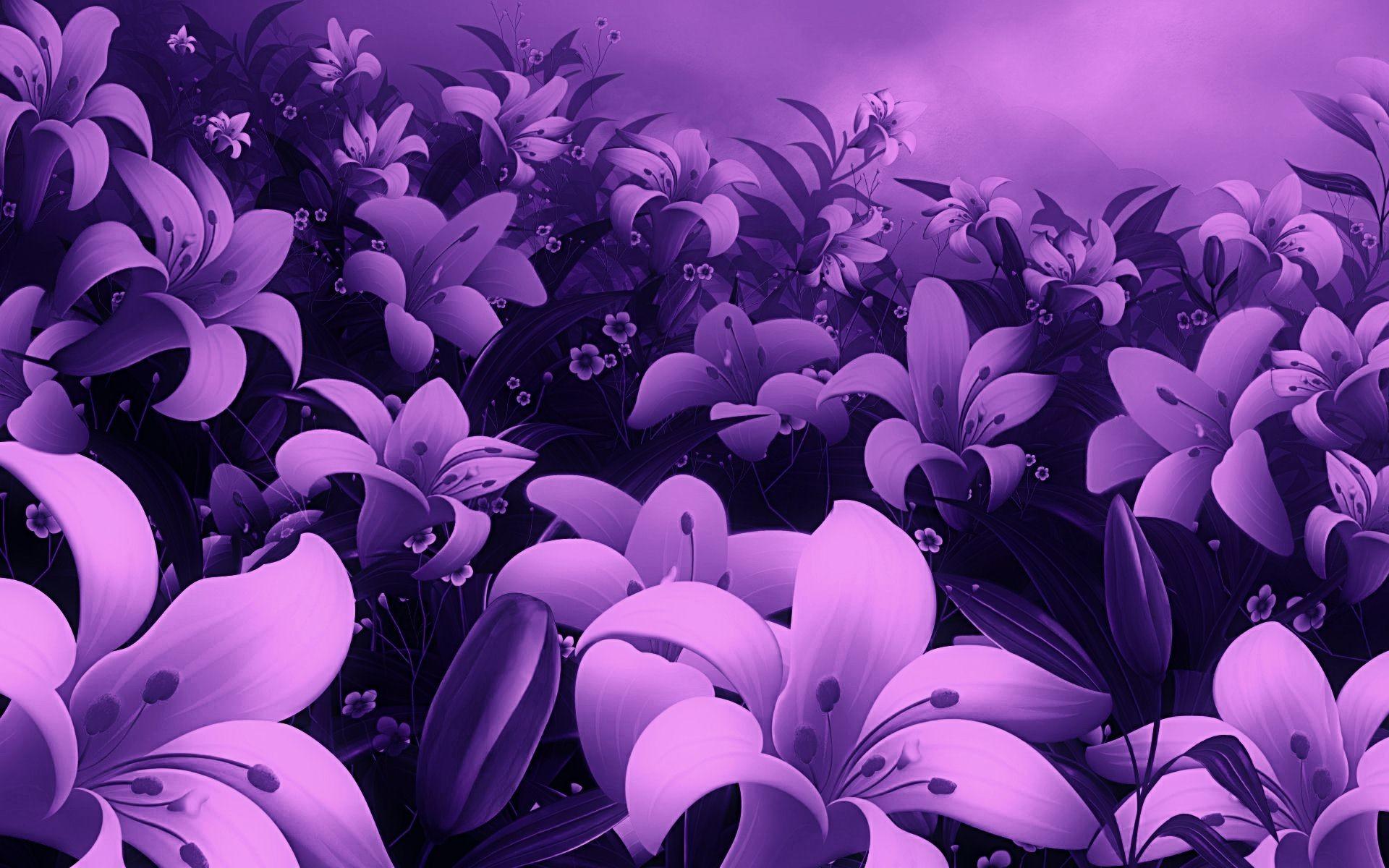 Beautiful Flower Indoor Wallpaper Hd Desktop M   Full Screen 1920x1200