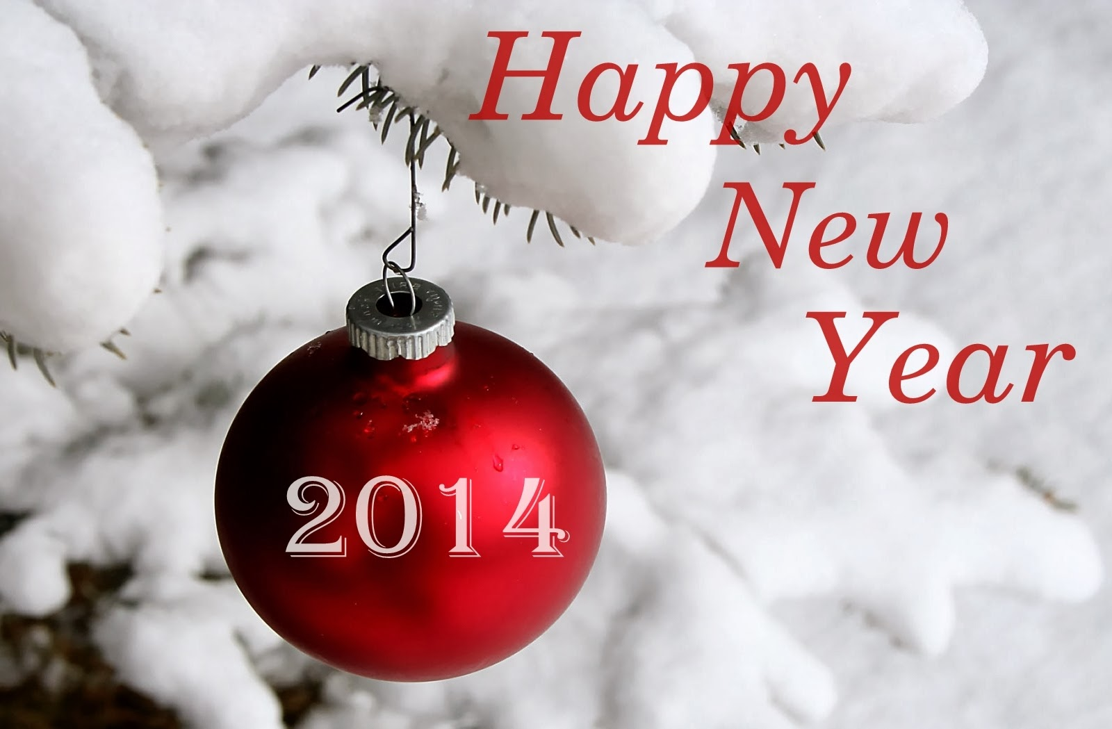 New Year 2014 Happy New Year Wishes Wallpapers Photos 1600x1049