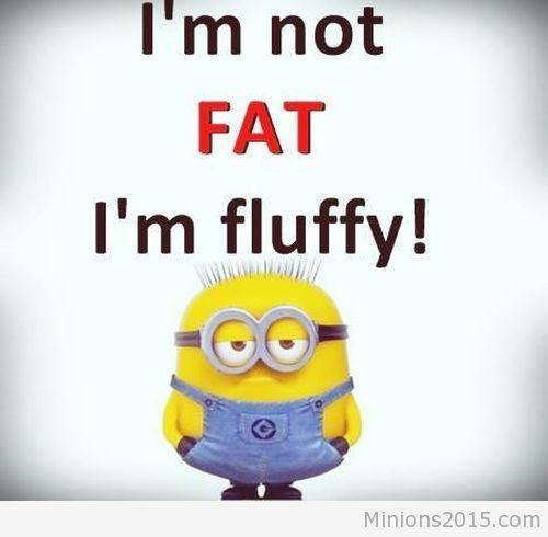 funny minions im not fat im fluffy 500x490