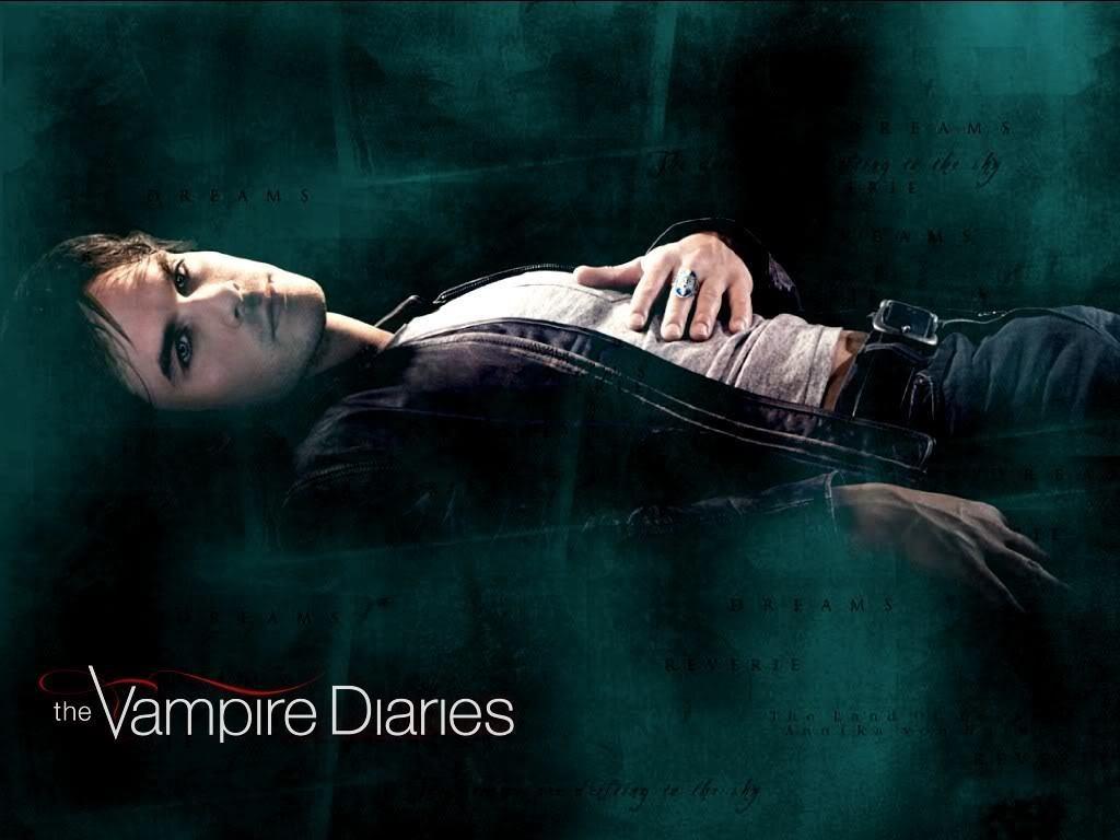 The Vampire Diaries   Damon and Stefan Salvatore Wallpaper 1024x768