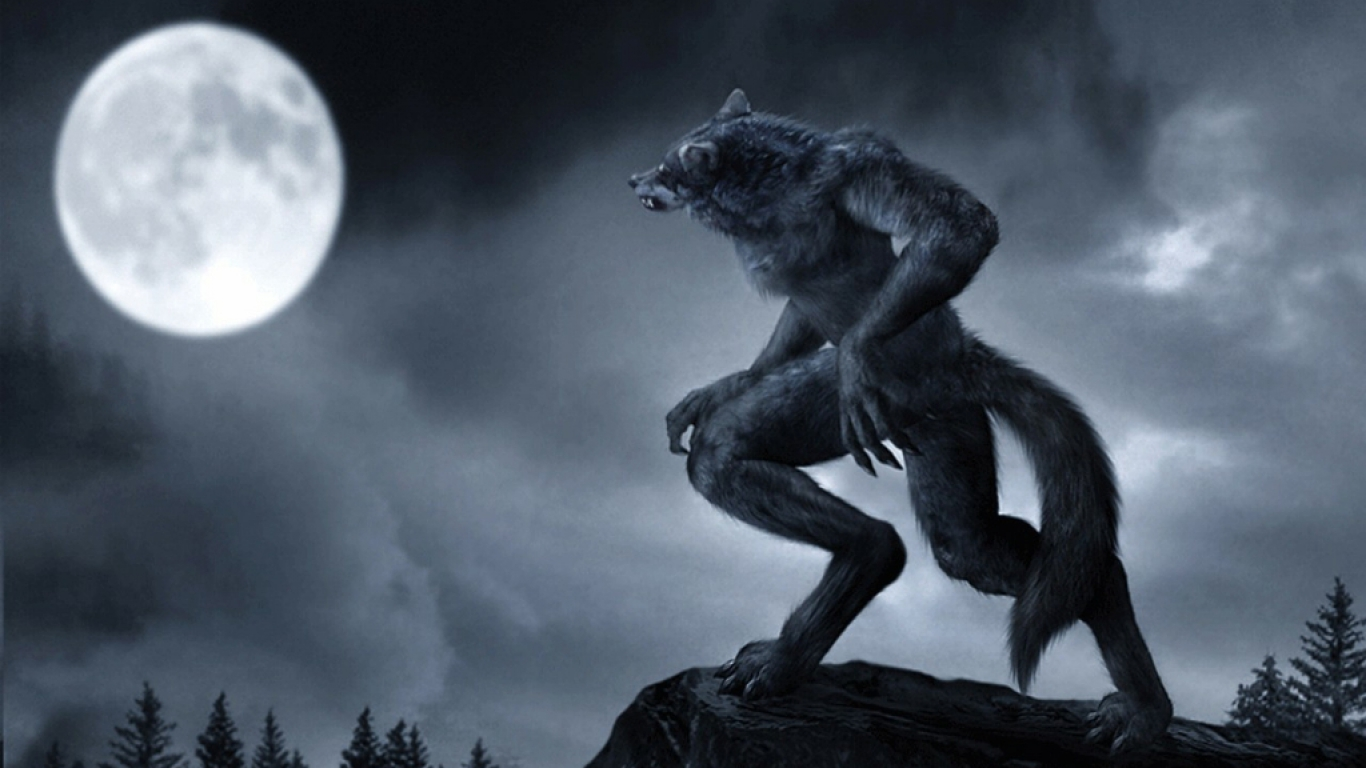 Hd wallpaper wolf - Wallpapers Hd Desktop Wallpapers Free Online Hd Wolf Wallpapers