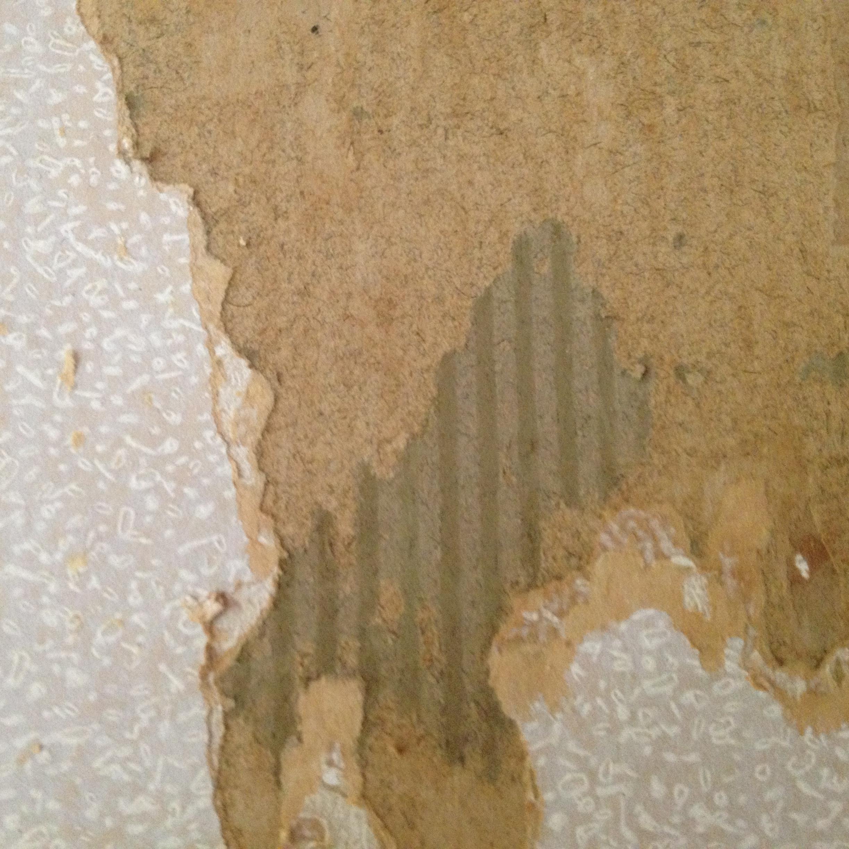 Art Nouveau Wallpaper Images TheCelebrityPix 2446x2448
