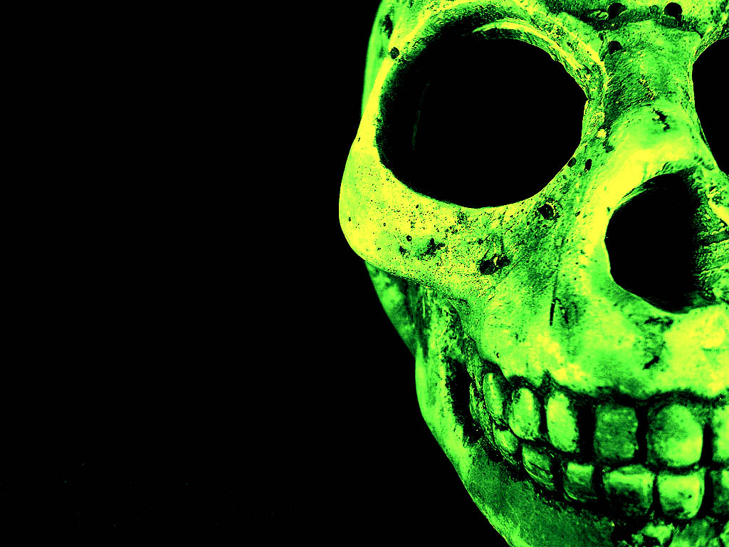 Skull Wallpaper Hd   QyGjxZ 1024x768