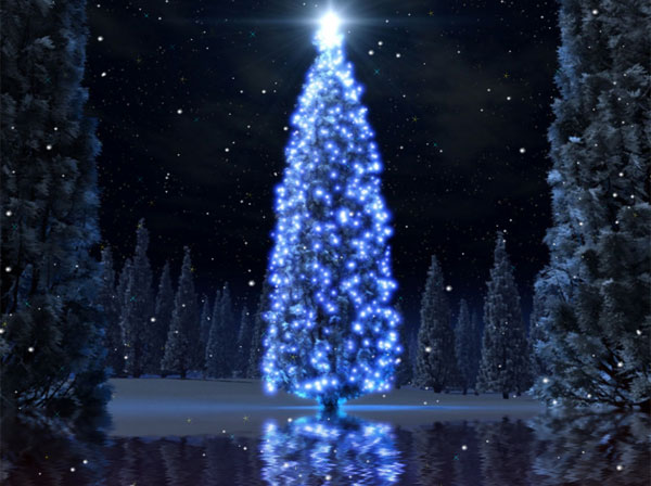 User reviews of Christmas Tree Animated Wallpaper 100 600x448