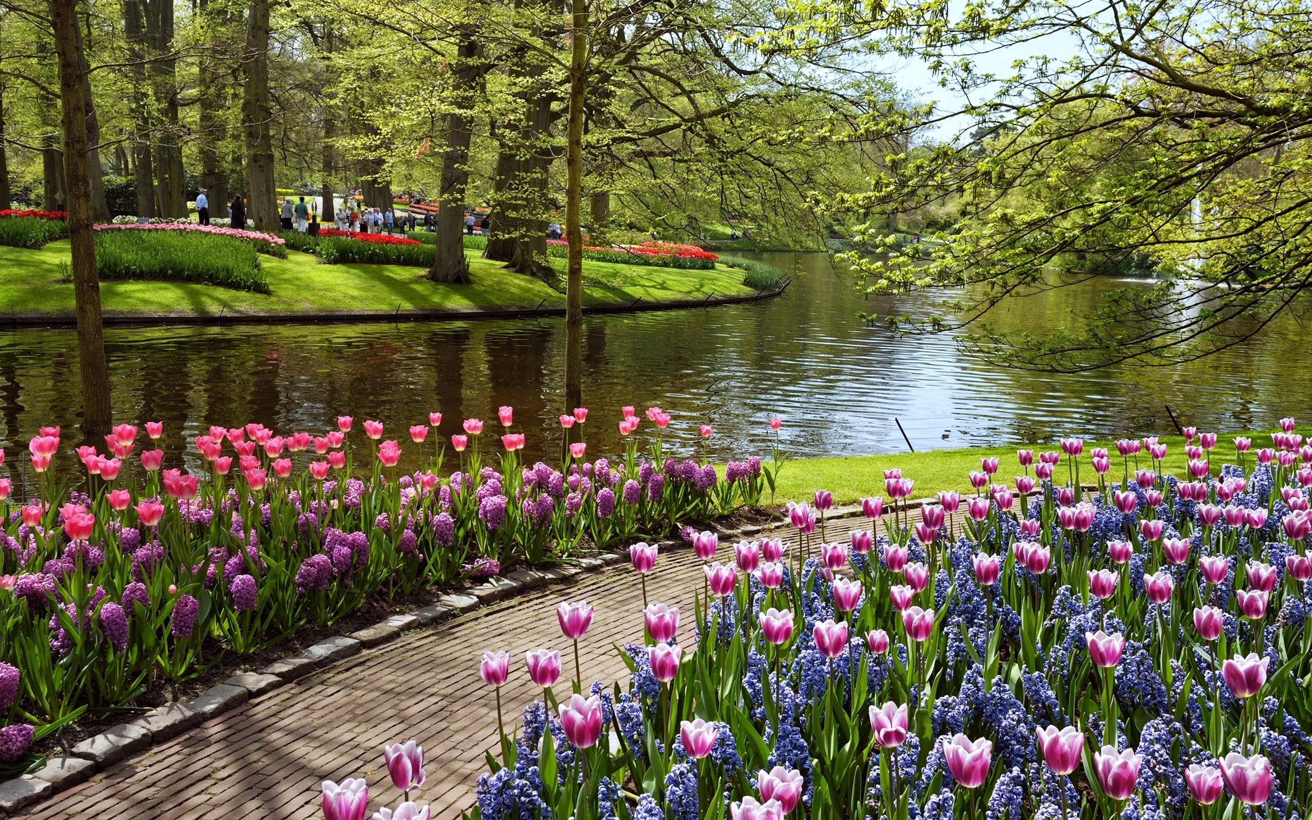 Beautiful Summer Garden Wallpapers HD Desktop and Mobile Backgrounds 2560x1600