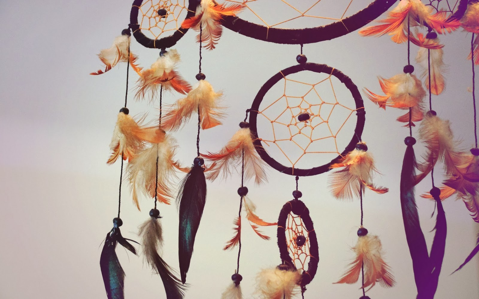 Dream Catcher With Quote Inside Beautiful dreamcatcher hd 1 1600x1000
