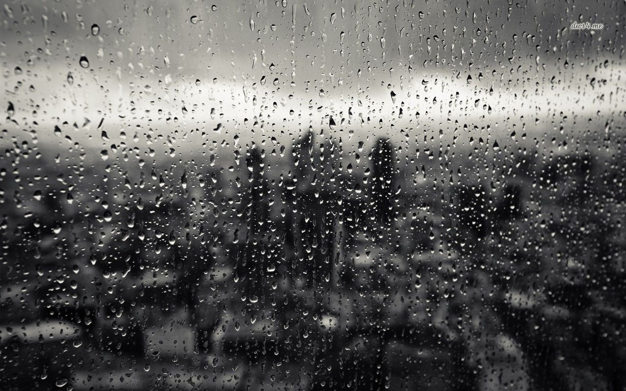 Rainy window wallpaper   Photography wallpapers   24929 1280x800