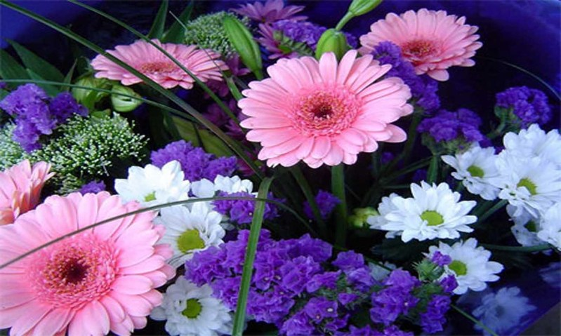 Spring Flowers Wallpaper 3 799x479