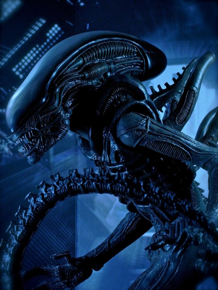 aliens movie 2160x2880 wallpaper High Quality WallpapersHigh 728x970