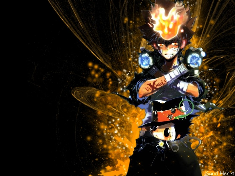 Tsuna and Reborn   Katekyo Hitman Reborn Wallpapers theAnimeGallery 790x593