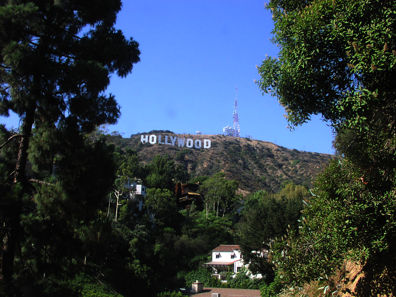 Hollywood Hills Wallpaper Hollywood hills by della stock 1600x1200