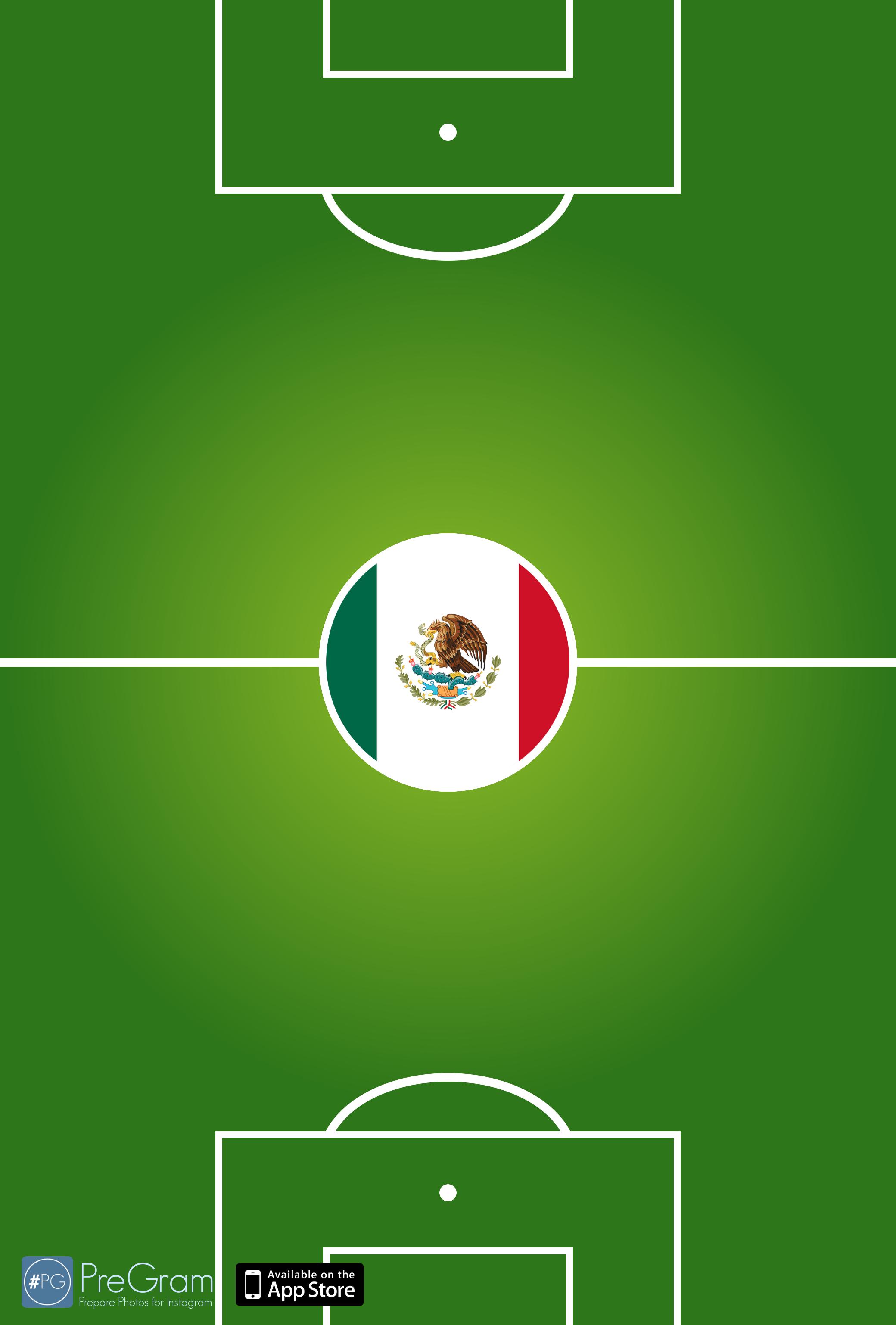 Mexican Soccer Logo Wallpaper Mexico 2080x3076