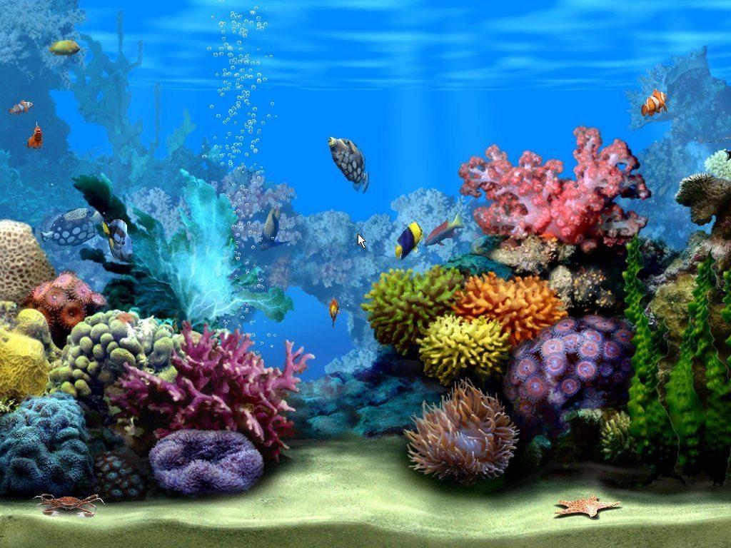 Картинки на рабочий стол на весь экран живые обои аквариум