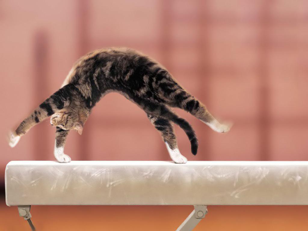 Cool Gymnastics Backgrounds Cool gymnastics backgrounds i 1024x768