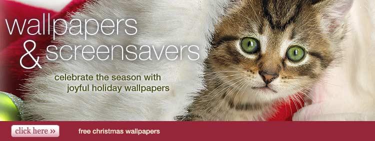 free christmas wallpapers christmas screensavers 750x283