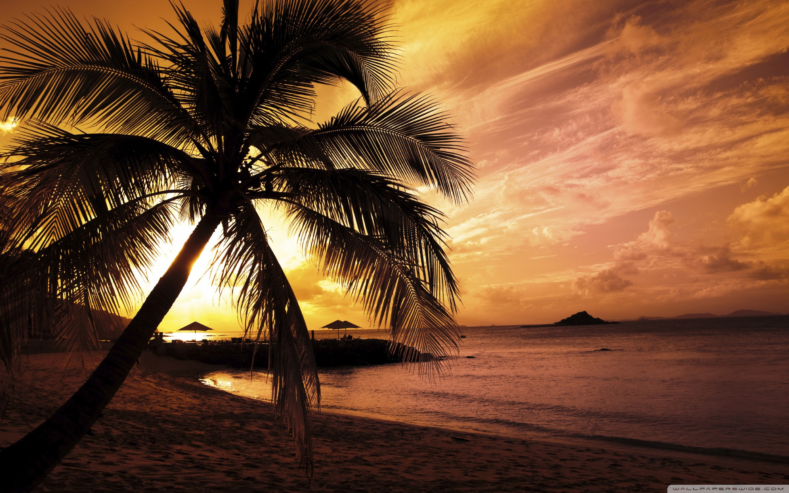 sunset pictures tropical island sunset pictures tropical island sunset 2560x1600