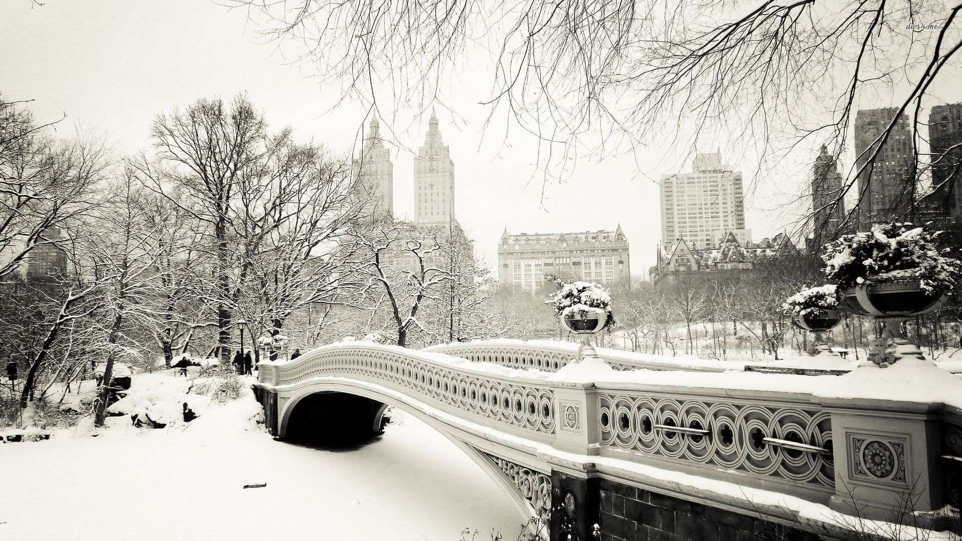 World Winter Snow New York City New York USA Central Park 1920x1080