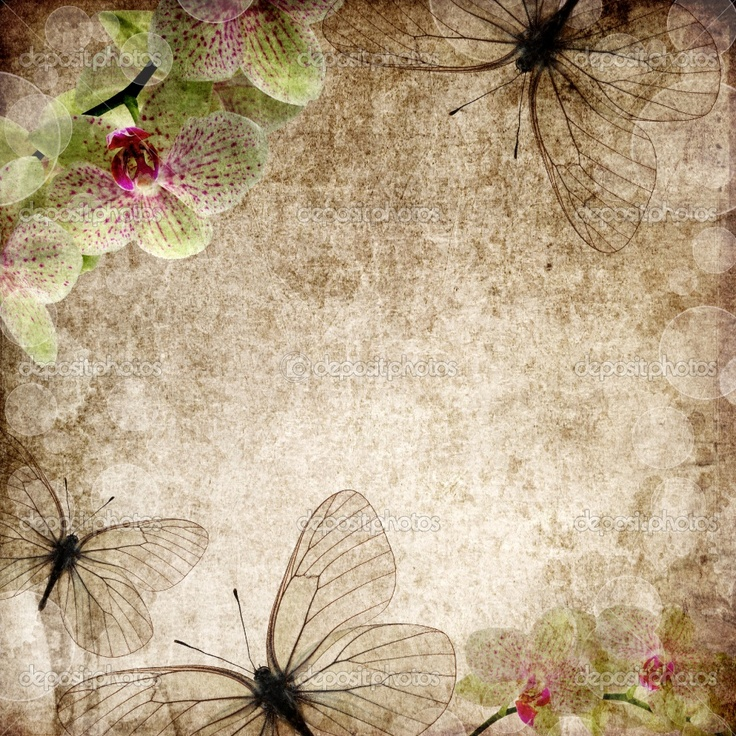 Orchid and butterfly vintage wallpaper Vintage Wallpapers 736x736