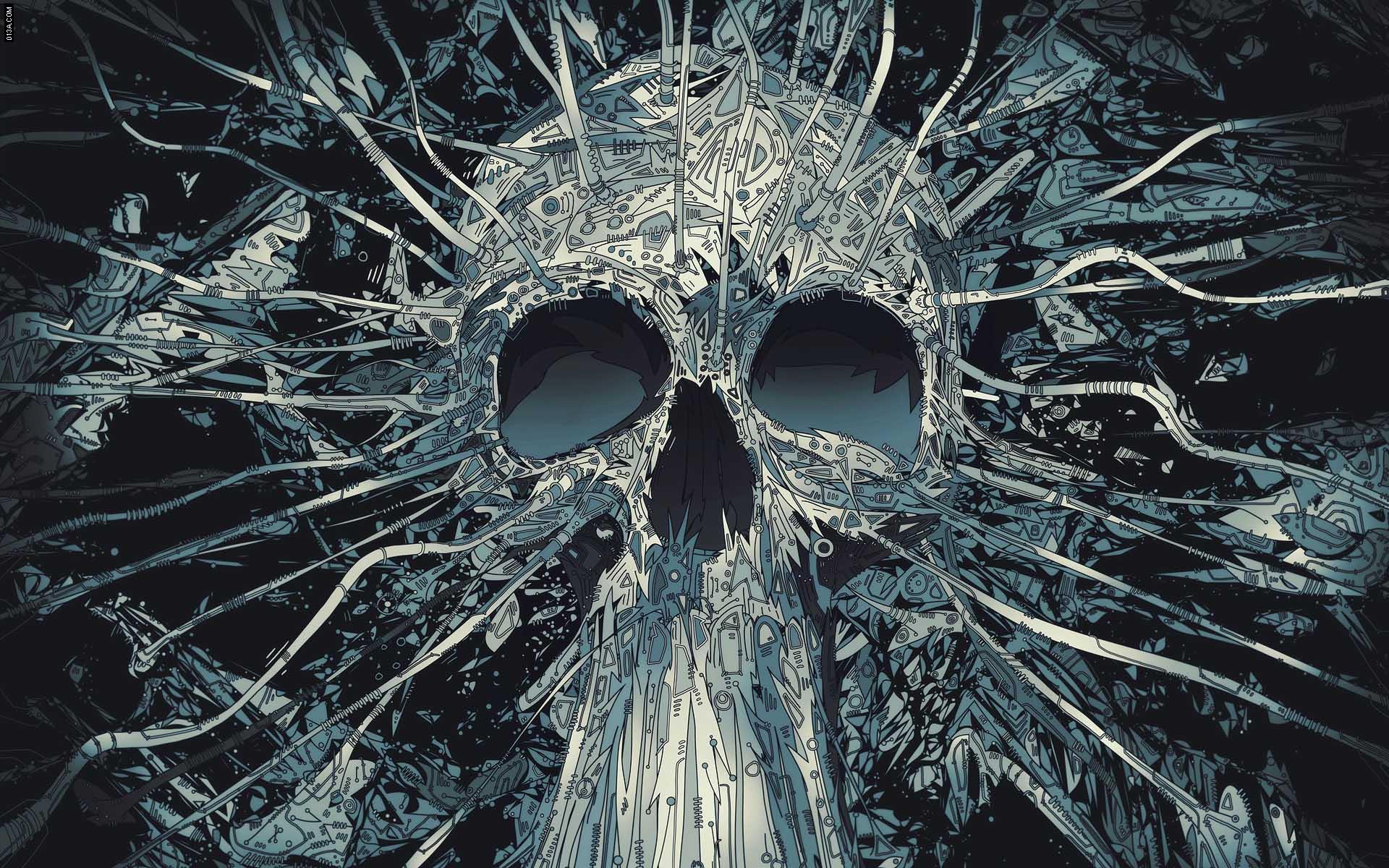 Skull wallpaper   688801 1920x1200