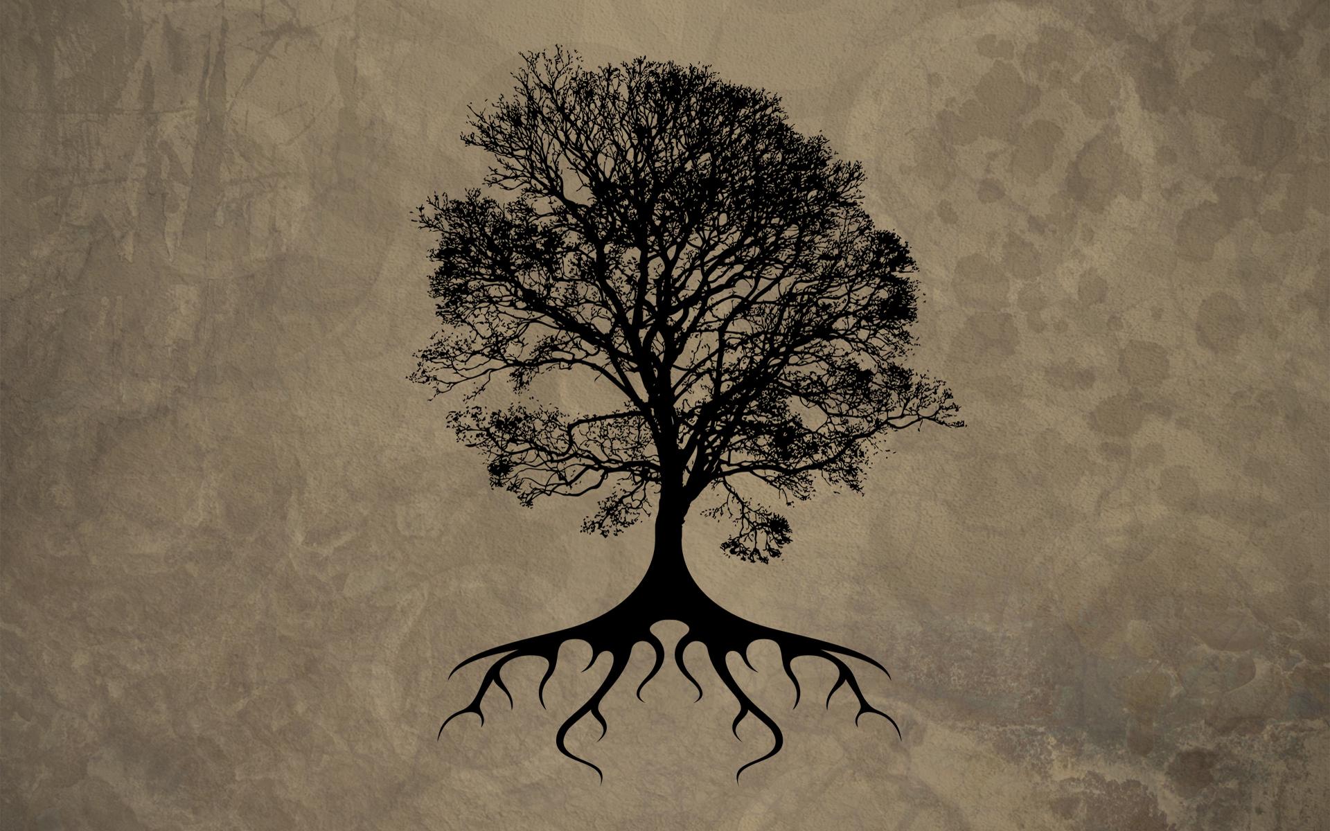 Oak Tree Drawing Dead Oak Tree Silhouette Oak Tree Tattoo Oak 1920x1200