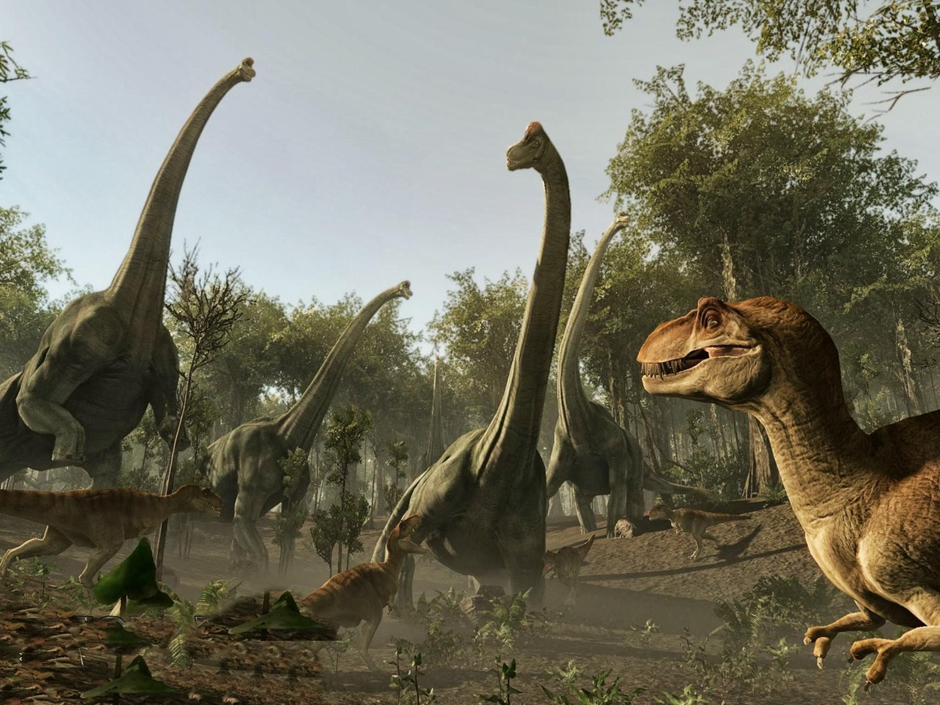 46+ Dinosaur HD Wallpaper on WallpaperSafari
