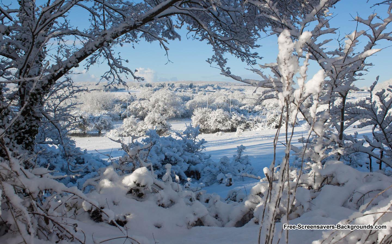 google winter screensavers and wallpaper - photo #1