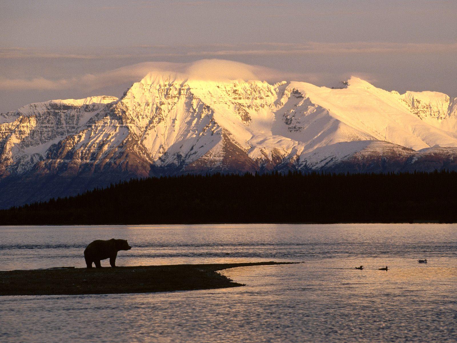 Apple Wallpapers Alaska Cute Travel Pictures Alasca Desktop On Mac 1600x1200