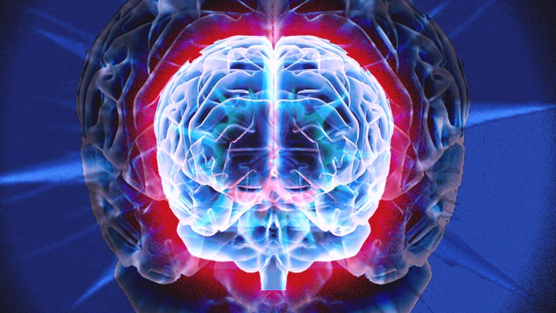 brain wallpaper hd wallpapersafari