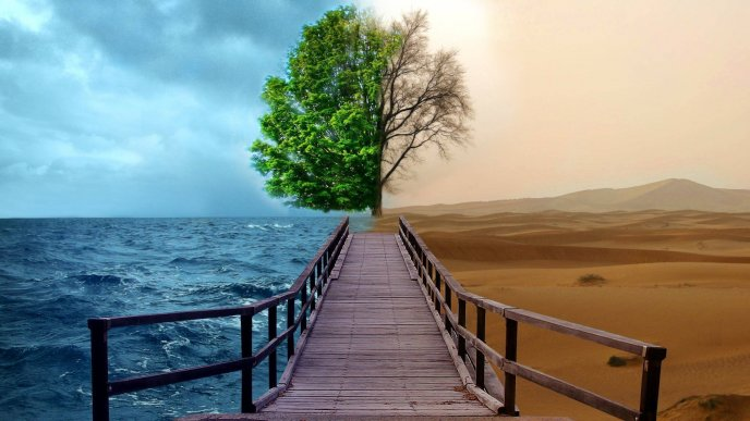 Water and desert   spring and autumn   Image Download   High 688x387