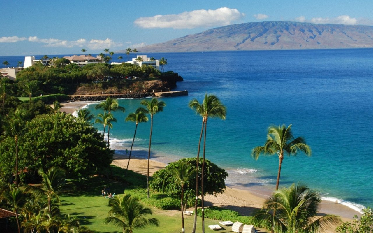 the background information of hawaii Search court records hawaii - find out about all the private and public records, just click the link below and you can easily check background information online.
