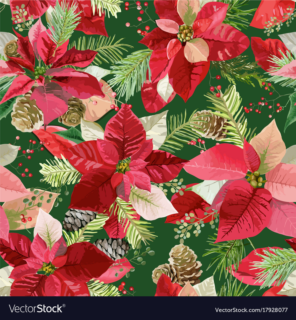 Christmas poinsettia flowers seamless background Vector Image 1000x1080