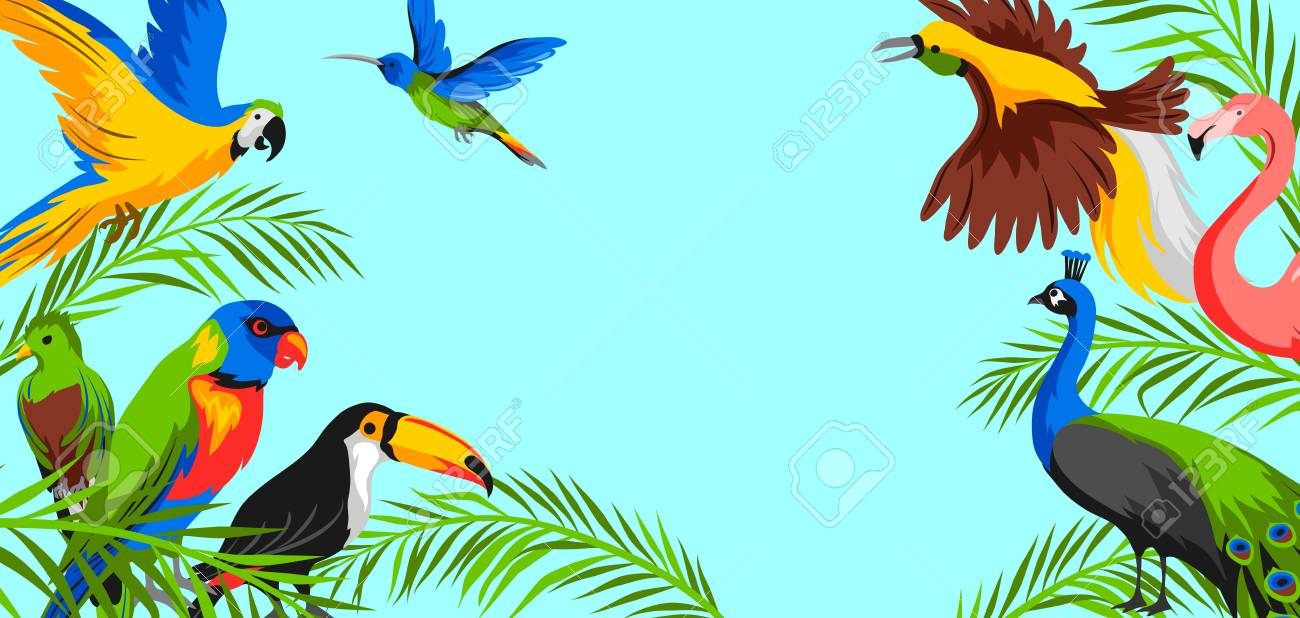 Background With Tropical Exotic Birds Wild Fauna Of Jungle And 1300x618